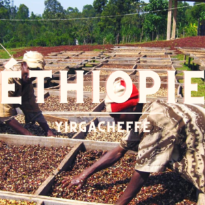 Ethiopie | Yirgacheffe | J'aime Thé Café