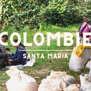 Café de Colombie | Santa-Maria