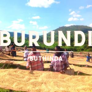 Café du Burundi | Buthinda